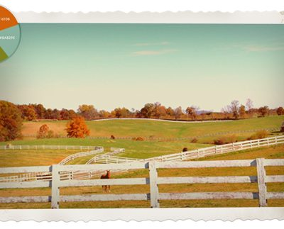 Images of Fall :: Rolling Fields part 2