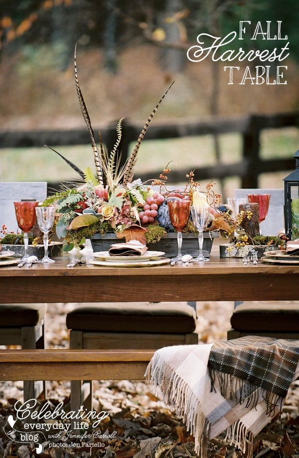 Fall Harvest Table, Thanksgiving Table Decorations, Thanksgiving Centerpieces, Thanksgiving Settings, Fall Centerpieces, Autumn Centerpieces, Fall Tablescape, Autumn Tablescape, Thanksgiving Decorations, Autumn Decorations, Fall Decorations, Thanksgiving Entertaining, Fall Entertaining, Autumn Entertaining, Thanksgiving Ideas