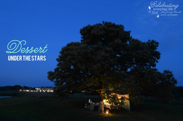 Dessert Under the Stars, Dinner under a tree, Entertaining Outdoors, Easy Entertaining, Summer Party Ideas, Summer Celebrations, Easy Celebrations