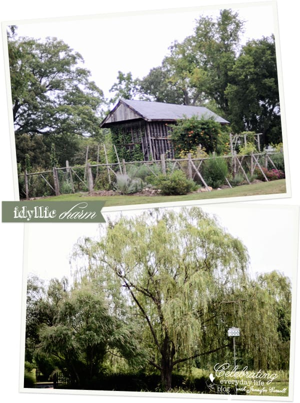 Belle Haven willow and vegetable garden