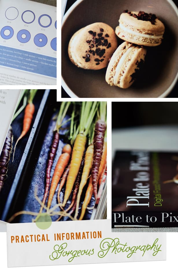 Plate to Pixel Digital Food Photography & Styling Book