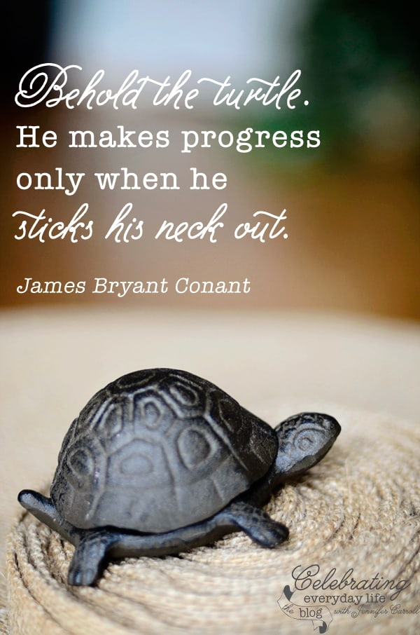 Behold the Turtle quote, be brave quote, inspirational quote, motivational quote