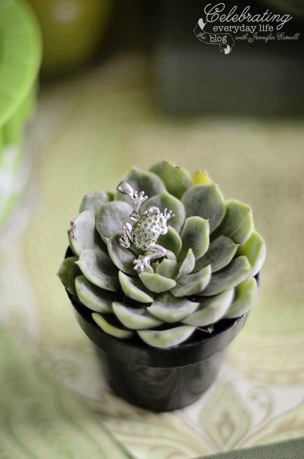 Frog pendant, green succulent plant