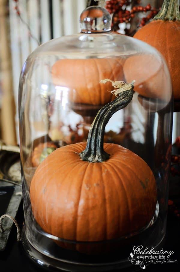 Pumpkin in Glass Cloche, autumn decor ideas, fall decor ideas