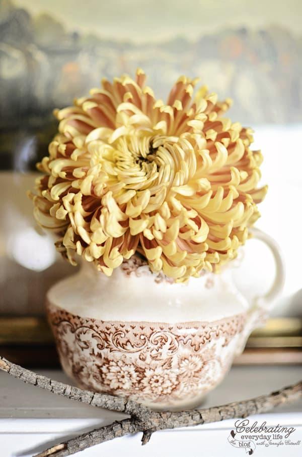 dried chrysanthemum, vintage brown transferware