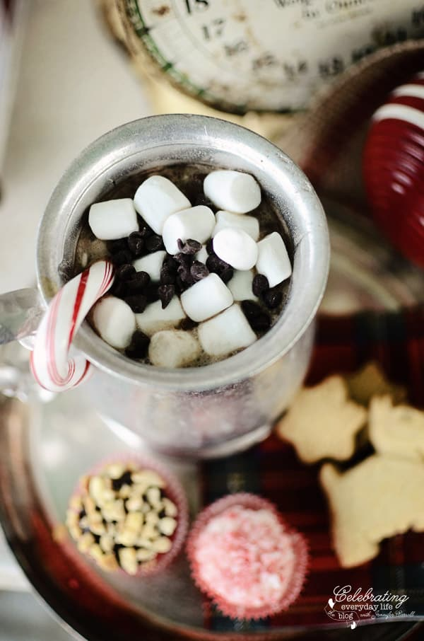 Cocoa Cup with mini marshmallows, mini chocolate chips, and candy cane with treats