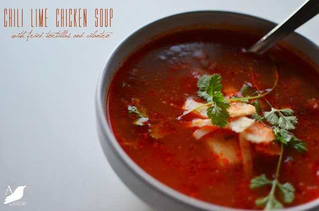 chili lime chicken soup, a nest for all seasons