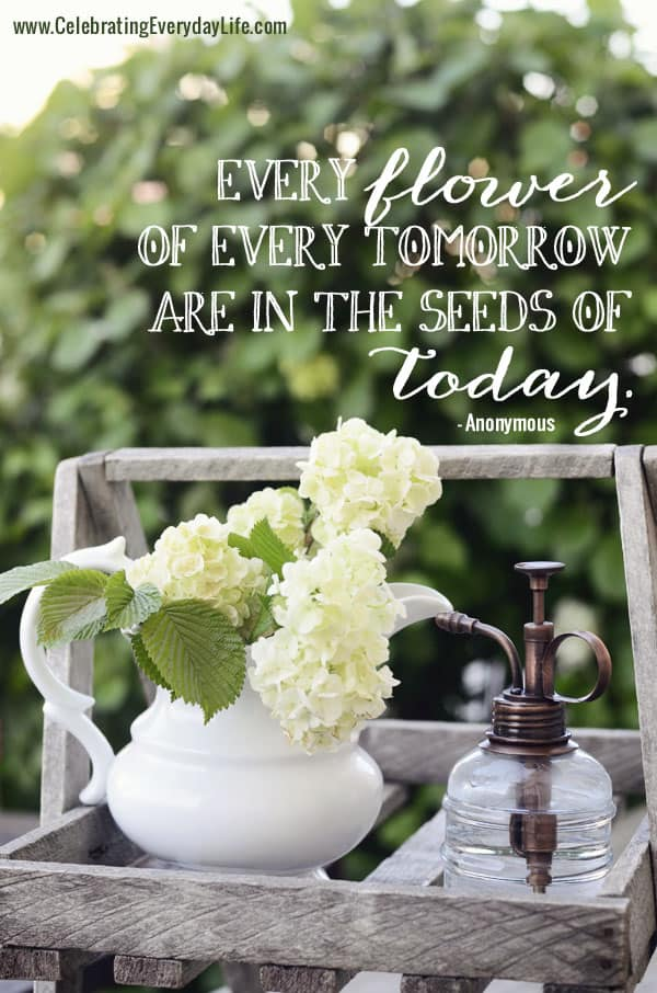 Every flower  of every tomorrow are in the seeds of today, Inspiring Quote, Hydrangea blooms in a pitcher, Celebrating Everyday Life