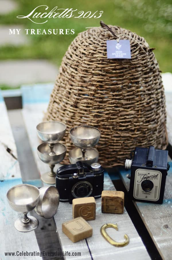 Treasures from Lucketts Spring Market 2013, Bee Skep, Antique Cameras, Vintage French Dessert Cups, Letter blocks