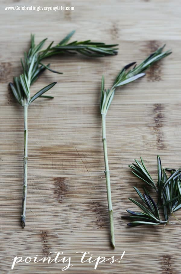 Rosemary Skewers from Celebrating Everyday Life blog