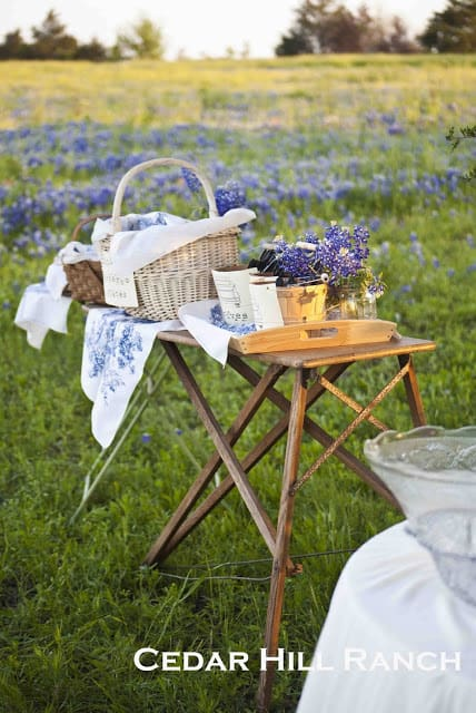 ironing board from Cedar Hill Ranch blog