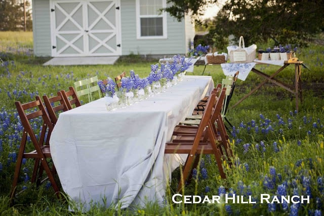 wildflower party table from Cedar Hill Ranch blog