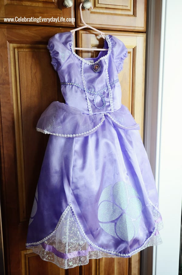 Sofia the first gown, Sofia the First Cake, Sofia the first birthday party, 3rd birthday party, Celebrating Everyday Life with Jennifer Carroll