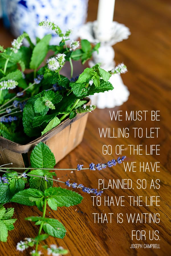 Inspiring Quote, We must be willing to let go of the life we have planned, so as to have the life that is waiting for us, Celebrating Everyday Life with Jennifer Carroll