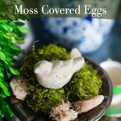 DIY Moss Covered Eggs