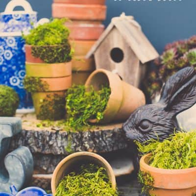 Moss Covered Pots Tutorial