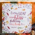Falling Leaves Free Fall Printable