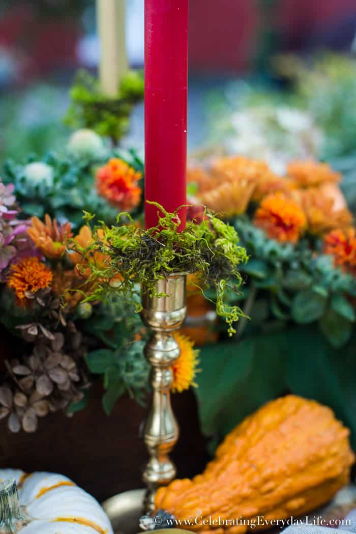 moss candlesticks, A Fall Tablescape, Fall Entertaining, Welcome Autumn, autumn splendor, Harvest table, Thanksgiving table decor, thanksgiving table ideas, Lush fall table ideas, outdoor fall entertaining, Celebrating Everyday Life with Jennifer Carroll