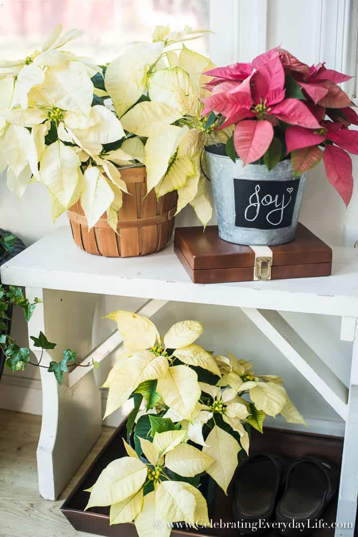 How to add Farmhouse Style to your Mudroom in Winter | Celebrating Everyday Life with Jennifer Carroll | www.CelebratingEverydayLife.com