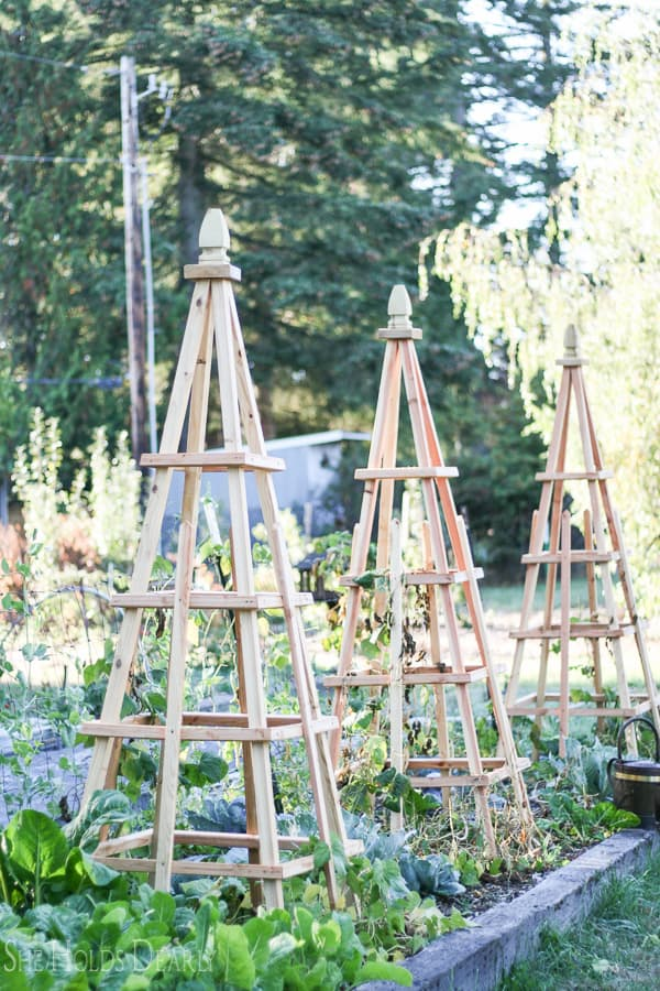 DIY French Tuteurs for the garden from She Holds Dearly