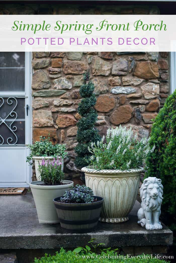 Simple spring front porch potted plants celebrating for Low maintenance potted plants