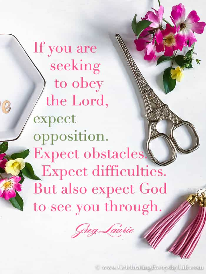 Expect Opposition quote by Greg Laurie