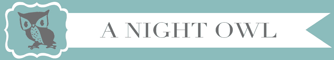 A Night Owl Blog Logo