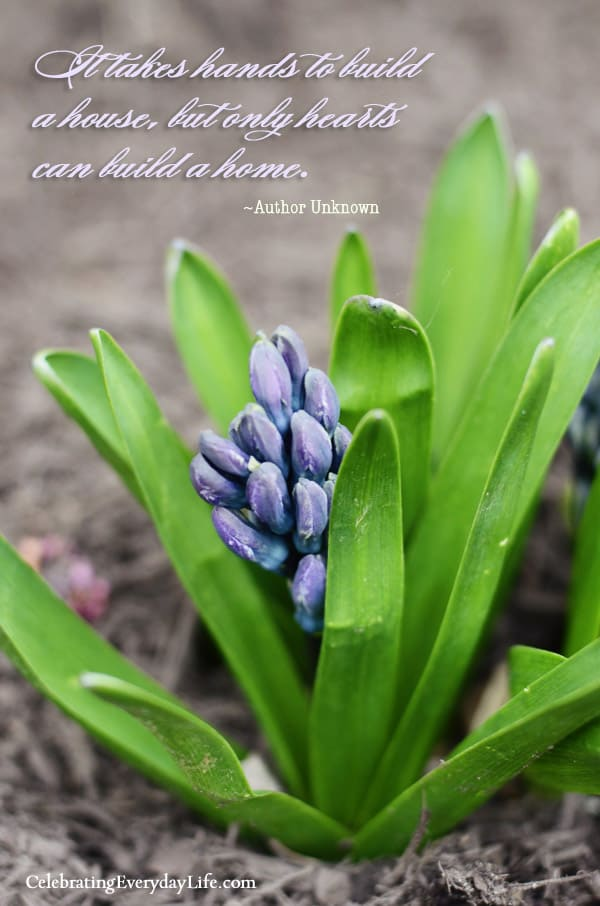 Hyacinth Bloom, Hearts Build A Home quote, Inspiring Quote