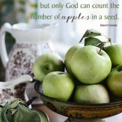 {Inspiring Quote} Only God Can Count the Number of Apples in a Seed