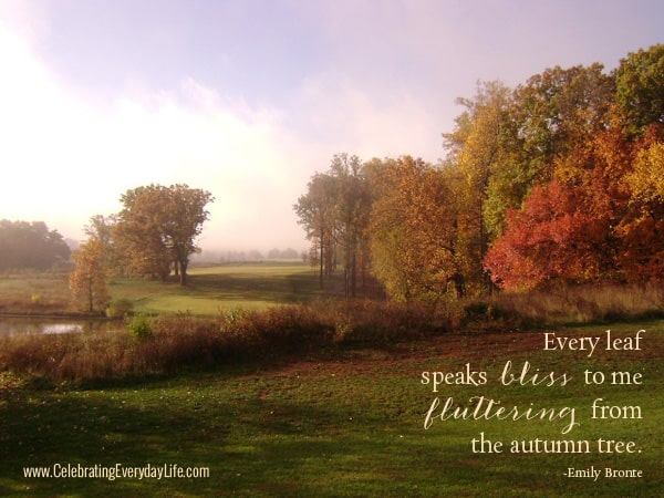 Every leaf speaks bliss to me Fluttering from the autumn tree, Autumn Quote, Fall Quote, Autumn Leaves, Celebrating Everyday Life with Jennifer Carroll