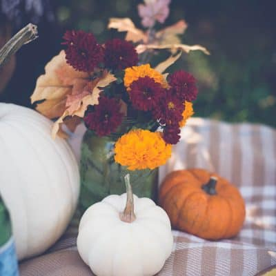 A Fall Picnic :: Enjoying the Simple Things