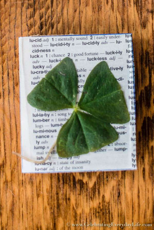 supplies for How to Frame A Shamrock, St. Patrick's Day Art, St Patricks Day Decor, Irish Art, Budget Art, Budget Decor, Lucky Art, Celebrating Everyday Life with Jennifer Carroll