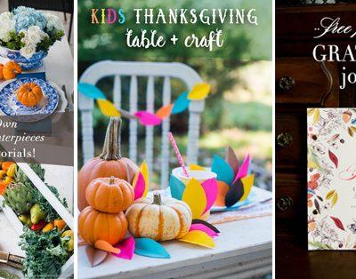Happy Thanksgiving Roundup!